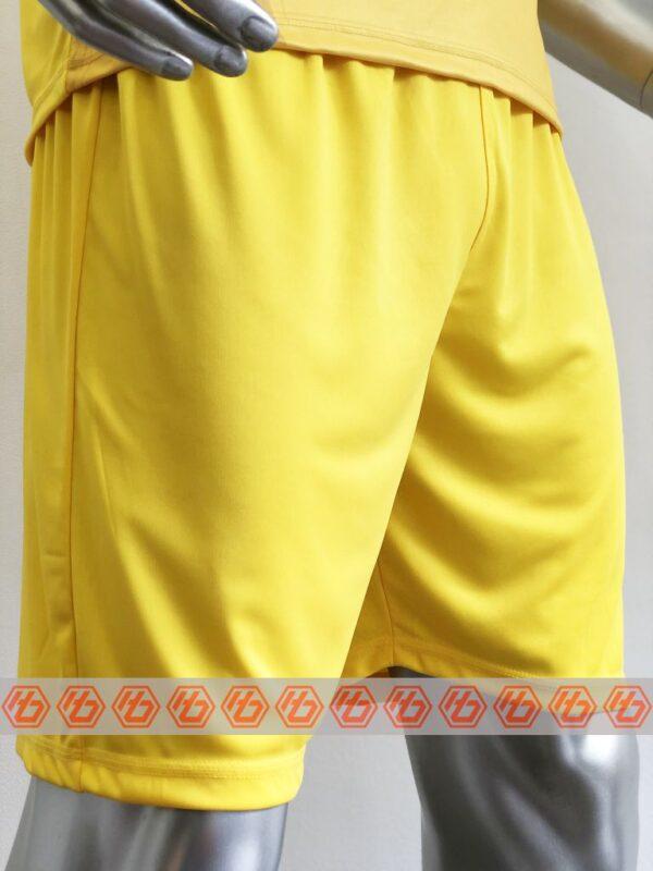 Áo thủ môn đội tuyển Việt Nam màu Vàng mùa giải 21-22 mặt quần